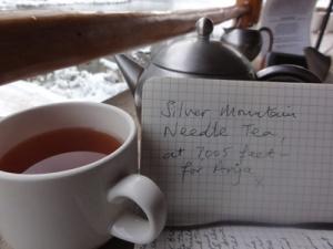 silver mountain needle tea