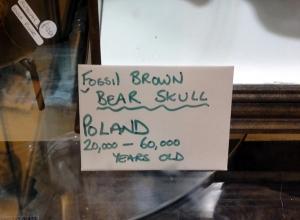bear-sign