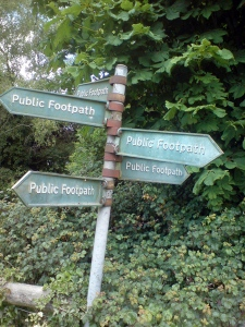 paths galore